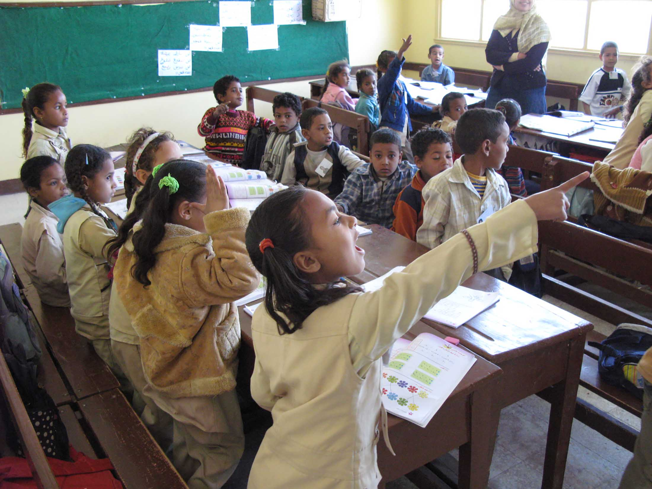 essay about educational system in egypt Educational and career goals introduction education is the education can be taking place in informal and formal educational and career goals (essay.