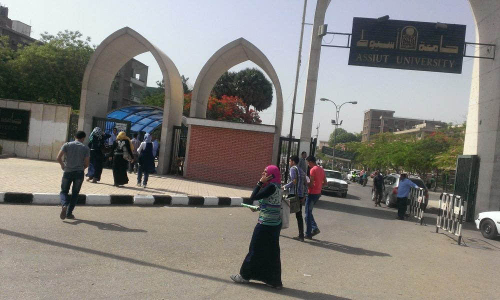 Master's Degree Programs in Egypt Plagued by Corruption
