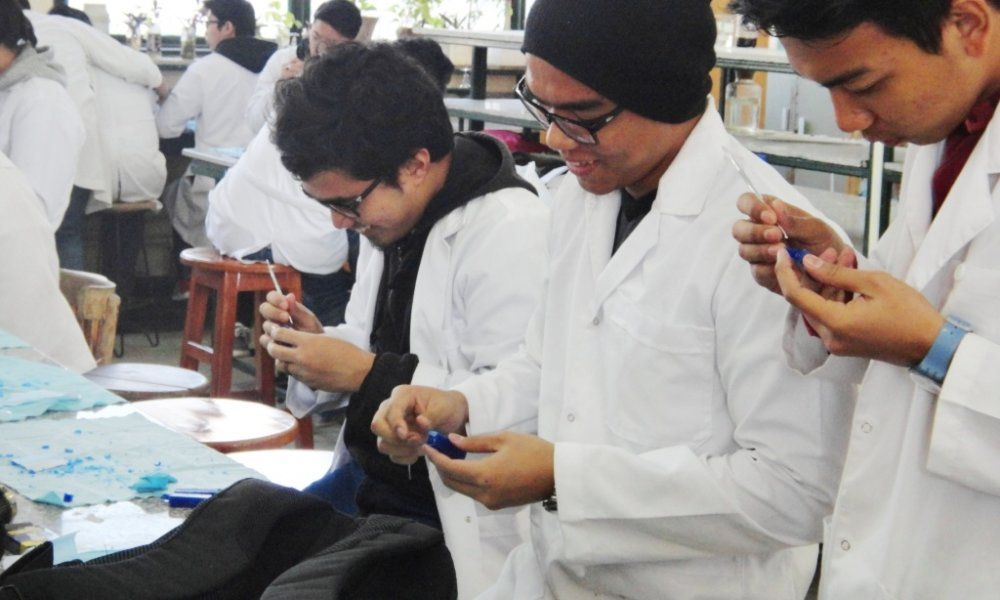 Egyptian Universities See Boom in Foreign Students
